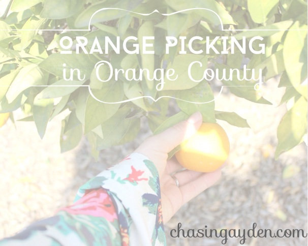 orange Picking in Orange County